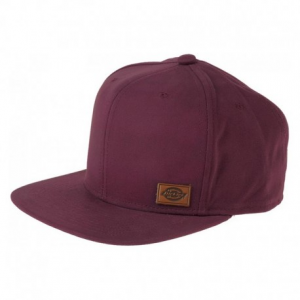 DICKIES Minnesota Hat - Brown