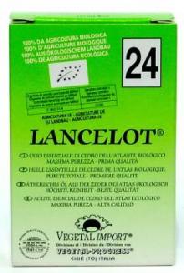 """LANCELOT"