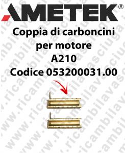 COPPIA Carboncini Motore aspirazione X motore Ametek A210