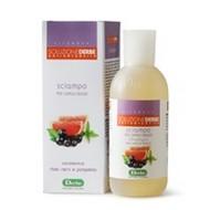 DERBE shampoo per capelli grassi con estratto di ribes nero e pompelmo