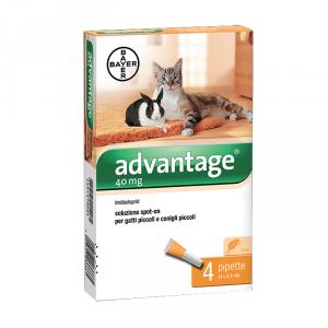 Antiparassitario Gatti Advantage Spot-On 40 Mg per gatti piccoli - Bayer