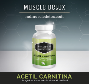 Acetyl Carnitine: Burn Fat and Improve Memory, Learning and Mood Levels