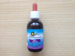RIBES NIGRUM gemme fresche soluzione idrogliceroalcolica a base di Ribes