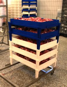 Baltresca: griglia con bordo in polipropilene impilabile per la lavorazione carni
