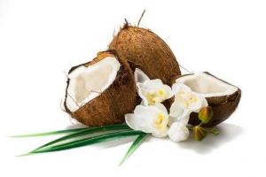 Sciroppo di Fiori di Cocco Bio - Organic - 250ml