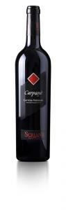 Vino rosso Carpanè Corvina Veronese 100%