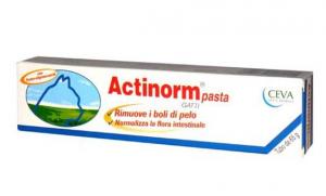 ACTINORM PASTA VETERINARIA PER GATTI 65 g