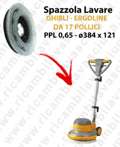 Cleaning Brush  for single disc GHIBLI  ERGOLINE from 17 inch (SB143). Model: PPL 0,65  ⌀384 X 121