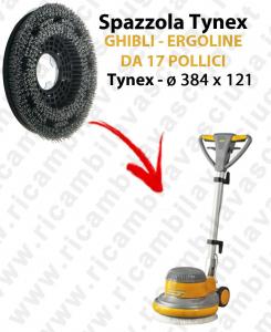 Cepillo TYNEX  para Monodisco GHIBLI ERGOLINE 17 pulgada. modelo: tynex  ø 384 X 121