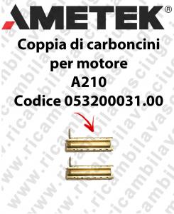COPPIA di Carboncini motor de aspiración para motore  Ametek A210 Cod: 053200031.00