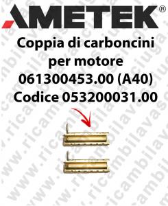 COPPIA di Carboncini Motore aspirazione per motore Ametek 061300453.00 (A40) Cod: 053200031.00