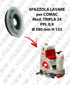 Cepillo Standard PPL 0.9 para fregadora COMAC mod. TRIPLA 24