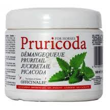 PRURICODA GEL OFFICINALIS  conf.500 G