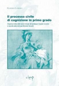 Il processo civile di cognizione in primo grado