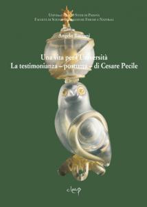 Una vita per l'Università. La testimonianza – postuma – di Cesare Pecile