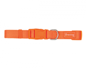 COLLARI IN NYLON CON GANCIO COLORATO FREEDOG