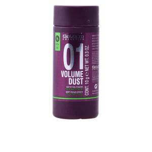 Salerm Cosmetics 01 Volume Dust Matifying Powder 10g