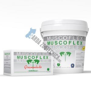 MUSCOFLEX 40 buste  - contro l'accumulo di acido lattico nei cavalli