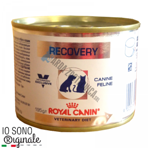 RECOVERY - ROYAL CANIN CANI/GATTI