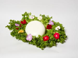 Poppea - Mozzarella di Bufala da 1 kg
