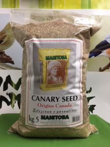 CANARY SEED  -SCAGLIOLA-