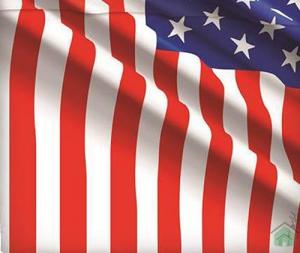 Bassetti copripiumino letto matrimoniale Bandiera 1 sopra 1 sotto 2 federe USA FLAG