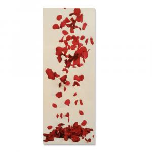 Coppia di tende orlate a vetro 60x150 cm no-stiro PICASSO stampa digitale rossa