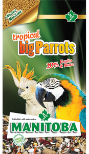 TROPICAL BIG PARROTS