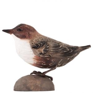 Deco Bird /WG414 - Merlo Acquaiolo gola bianca
