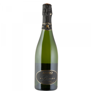 Brut Tradition DOCG 2009 - Anteo