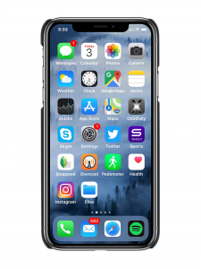 "Cover MARCELO BURLON ""SIX FLAGS"" per iphone X"