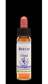 BEECH fiori di Bach 10 ml INTOLLERANZA E CRITICA VERSO GLI ALTRI