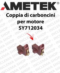 COPPIA di Carboncini Motore aspirazione per motori AMETEK  -  2 x Cod: 42005