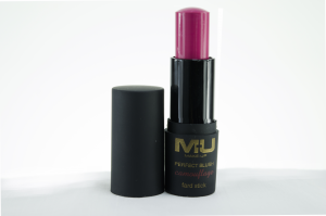 MU MAKEUP - FARD STICK PERFECT