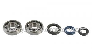 P400210444007 Kit Revisione Albero Motore koyo Honda
