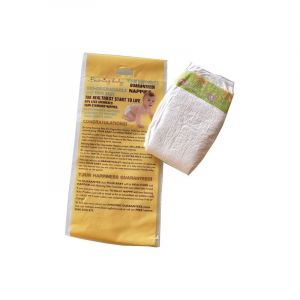 Prova Pannolino Ecologico Biodegradabile Beaming Baby - 2 pezzi