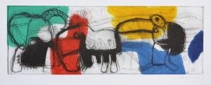 Asveri Gianfranco, Incisione, Tartaruga, Formato cm 45x100