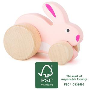 Coniglietto in legno da spingere