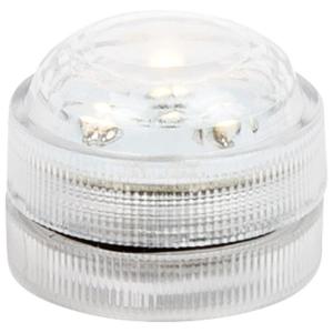 Lumino LED elettrico Espositore 24 pezzi