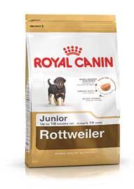 Rottweiler Junior confezione 12kg