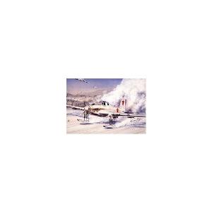 IL-2 STORMOVIK