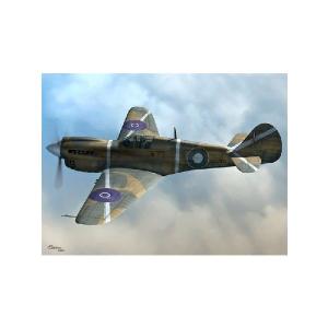 P-40K-10/15 WARHAWK