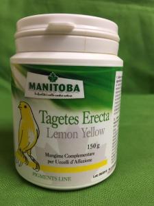 TAGETES ERECTA Lemon Yellow  confezione 150gr
