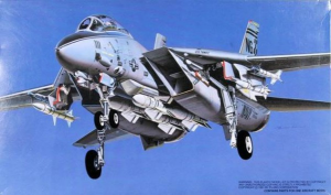 F-14A Plus Checkmates
