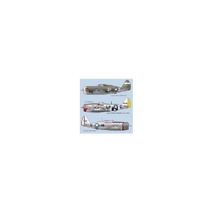 P-47D THUNDERBOLT PART 3