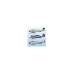 P-47D THUNDERBOLT PART 6