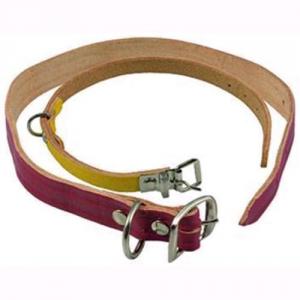 collare per cani cuoio colorato 12x33