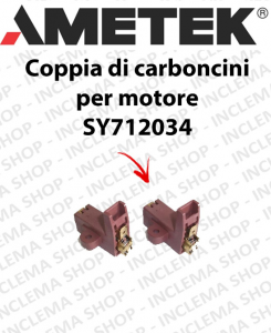 COPPIA di Carboncini motor de aspiración para motori AMETEK  -  2 x Cod: 42015