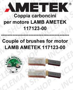 COPPIA di Carboncini motor de aspiración para motore LAMB AMETEK 117123-00 2 x cod. N33423-12