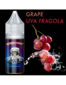 Frutti di Bosco Aroma concentrato - Monkeynaut